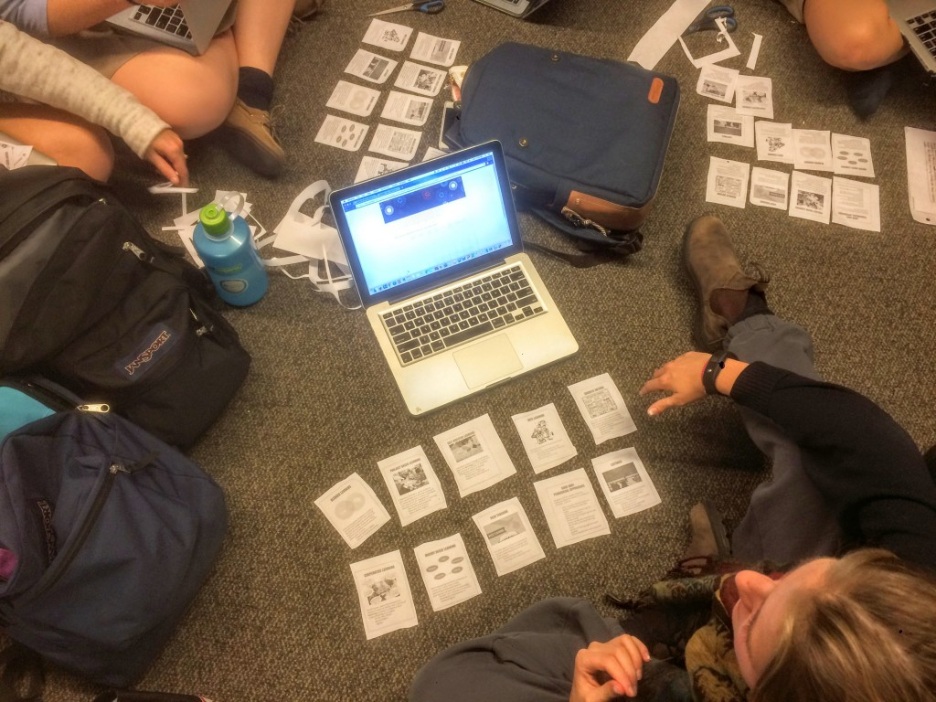 Students completing the card sort activity.